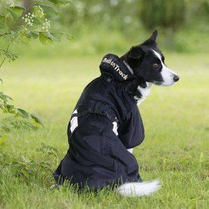 Netdækken til hunde fra Back On Track