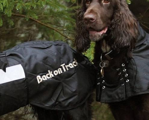 Back On Track hundedækken