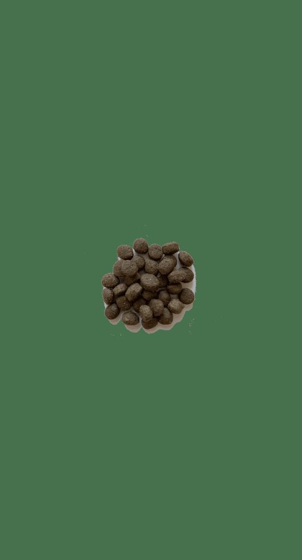 hundepille-voksen-10-mm